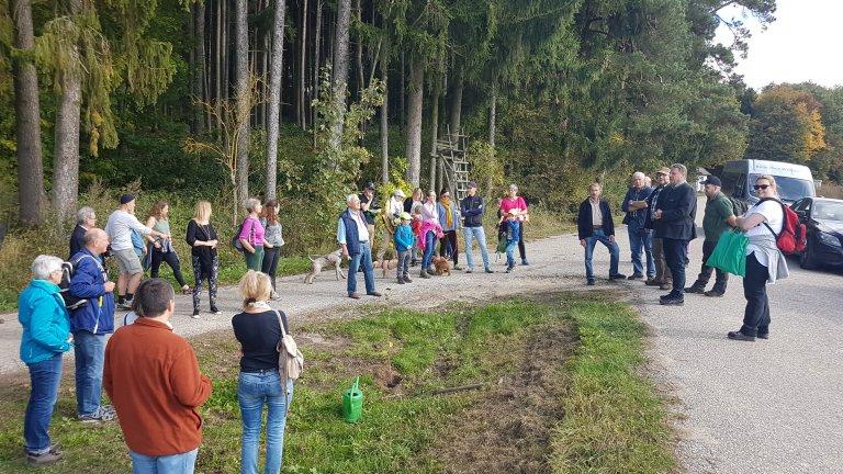 Grossansicht in neuem Fenster: Waldtag 2019