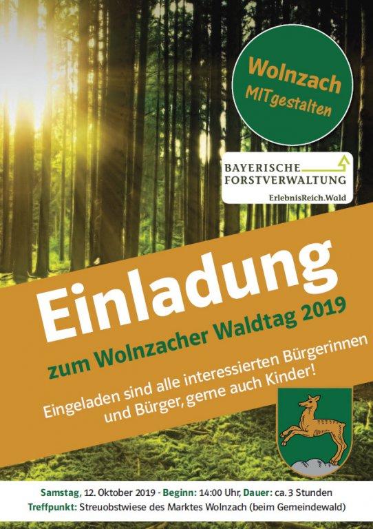 Grossansicht in neuem Fenster: Plakat Waldtag 2019