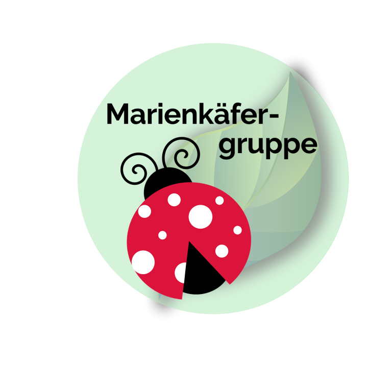 Button Marienkäfer