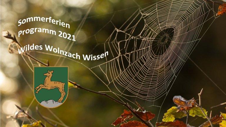 Grossansicht in neuem Fenster: Ferienprogramm Teaser Spinne