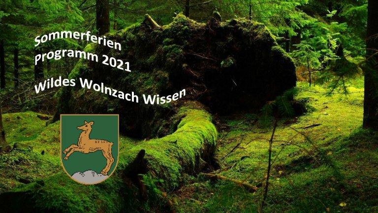 Grossansicht in neuem Fenster: Ferienprogramm Teaser Wald